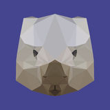 Abstract geometric polygonal wombat background Royalty Free Stock Photo