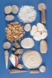 Abstract geometrisch patroon van diverse overzeese shells, zand en steen Stock Fotografie