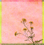 Abstract geweven vierkant Stock Fotografie