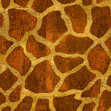 Abstract giraffe pattern - seamless background - wood surface Stock Image