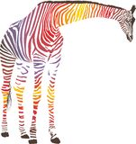 Abstract giraffe with zebra skin Stock Images