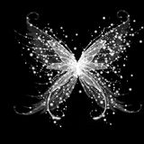 Abstract glamour butterfly. On black background Stock Images