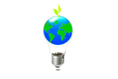 Abstract globe in the light bulb with plant growing up Royalty Free Stock Images