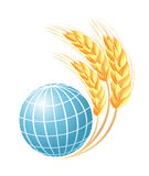 Abstract globe with wheat ears Royalty Free Stock Image