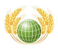 Abstract globe with wheat ears Stock Photo