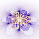 Abstract glowing colorful flower on white background. Royalty Free Stock Photos