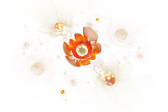 Abstract glowing rose flowers on white background. Royalty Free Stock Images