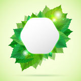 Abstract go green vector illustration with leafs Stock Photography