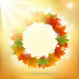 Abstract gold autumn background Royalty Free Stock Photo