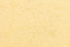 Abstract gold background with gold metal particles . Stock Image