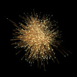 Abstract gold optical fiber light effect on black background. Stock Photos