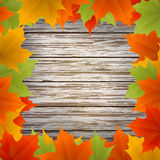 Abstract golden autumn frame. From maple leaves on wood background. Vector eps10 illustration Stock Photography