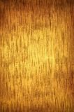 Abstract golden background Stock Image