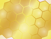 Abstract Golden Bright Yellow Honeycomb Background. Vector Illustration Stock Photos