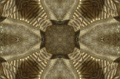 Golden Forms Pattern, coming from a fractal design. Abstract Golden Forms Pattern, coming from a fractal design Royalty Free Stock Photography