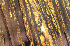 Abstract golden mineral background Stock Photo