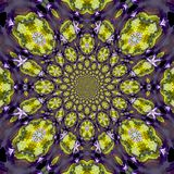 Abstract Golden Pattern, coming from a fractal design vector illustration