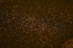 Abstract Golden splashes on brown background for cards, invitati Stock Photos