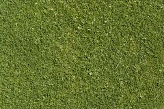 Abstract golf green background Stock Images