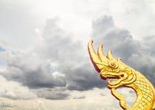 Abstract gouden serpenthoofd in dramatische onweerswolken Stock Afbeeldingen