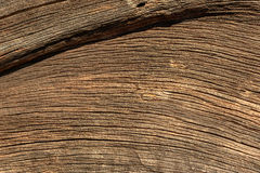 Wood grain abstract Stock Photos