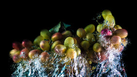 Abstract grapes in water Stock Images
