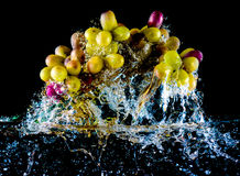 Abstract grapes in water Royalty Free Stock Photo