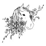 Abstract graphic horse head, print. Black and white horse head isolated. Engraving sketch. Abstract vector horse head in the flowers. Print for t-shirt. Wild Royalty Free Stock Images