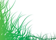Abstract grass Royalty Free Stock Photo