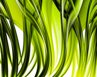 Abstract grass art Royalty Free Stock Photo