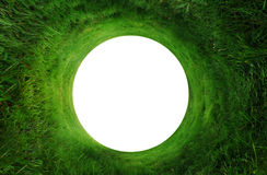 Abstract Grass Background Stock Image