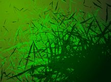 Abstract grass background Stock Images