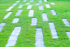 Abstract grass background with concrete pathway. Royalty Free Stock Images