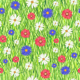 Abstract grass and flowers Stock Photography