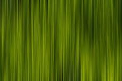 Abstract grass Royalty Free Stock Photos