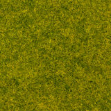 Abstract grass like texture design green color background stock photography