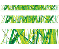 Abstract grass lines Stock Photography