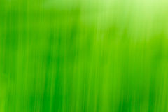 Abstract Grass/Nature Background Stock Photo