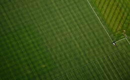 Abstract Grass Pattern - Aerial. Grass texture at NFL training facility Royalty Free Stock Image