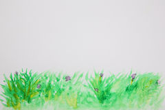 Abstract grass watercolor background Stock Image