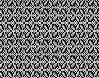 Abstract  gray scale floral seamless pattern Stock Image