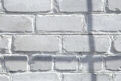 Free Abstract Gray Shadow Background Of Natural Leaves Tree Branch Falling On White Brick Wall Texture For Background And Wallpaper, Stock Images - 192878674