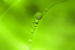 Abstract in green Royalty Free Stock Image