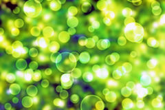 Abstract green background. Royalty Free Stock Photo
