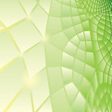 Abstract green background. Green background of lattice, reptile background Royalty Free Stock Photo