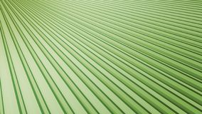 Minimal Blue Background - Subtle Graphic Illustrated BackdropAbstract Green Background - Angled Tropical Fan Leaf Graphic Illustra stock photography