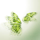 Abstract green background with butterfly Stock Photo