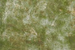 Abstract green background.Concrete or metal surface. Abstract green background.Old concrete or metal surface Royalty Free Stock Images