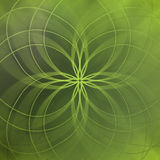 Abstract green background with elegant lines and soft blurred pattern Royalty Free Stock Images