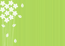 Abstract green background with flowers Stock Image